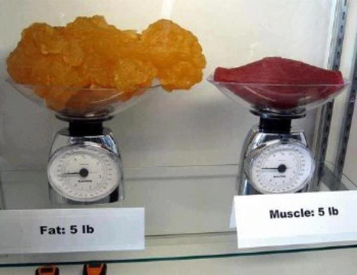 pierde un kilogram de grăsime
